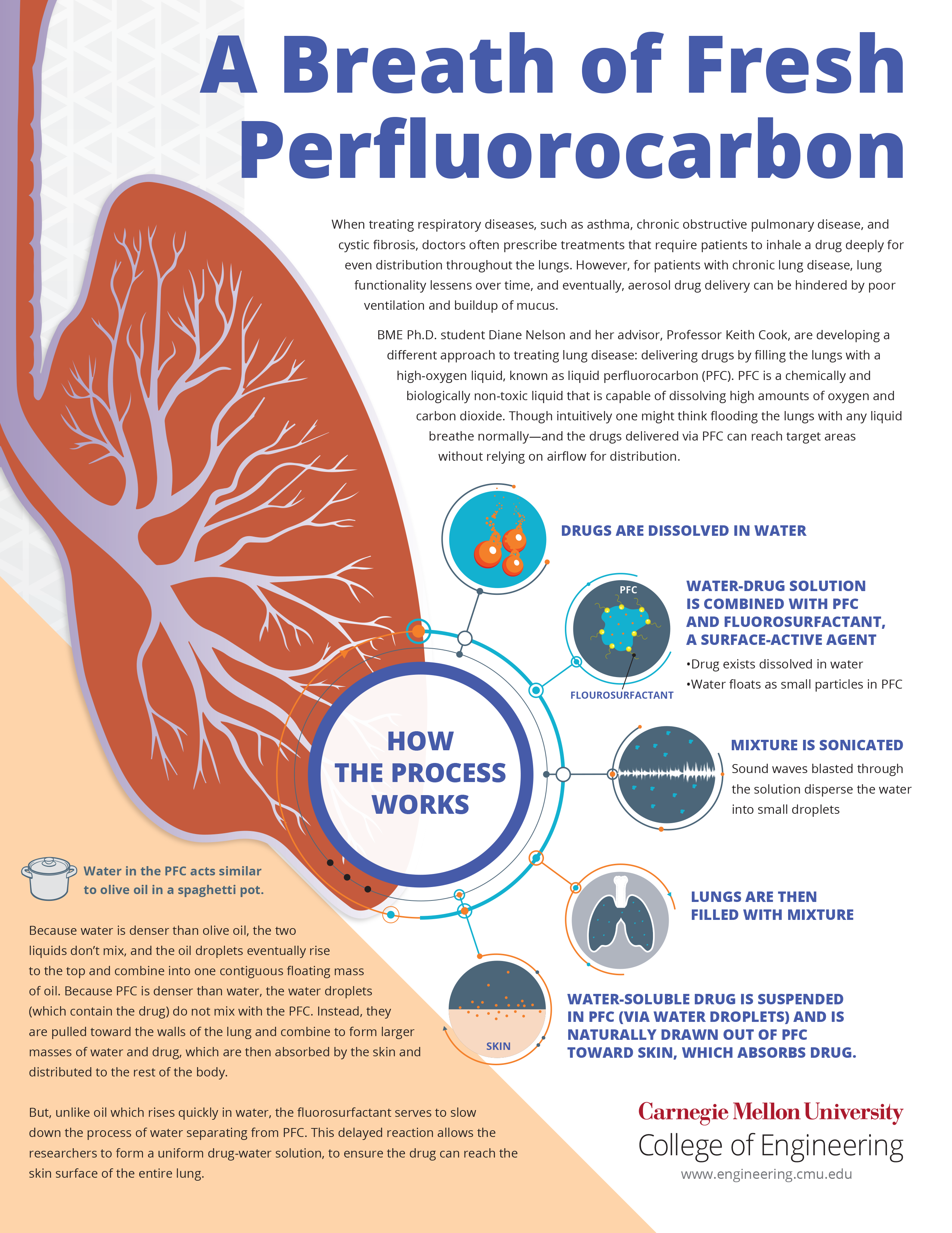 Infographic on liquid drug delivery to lungs