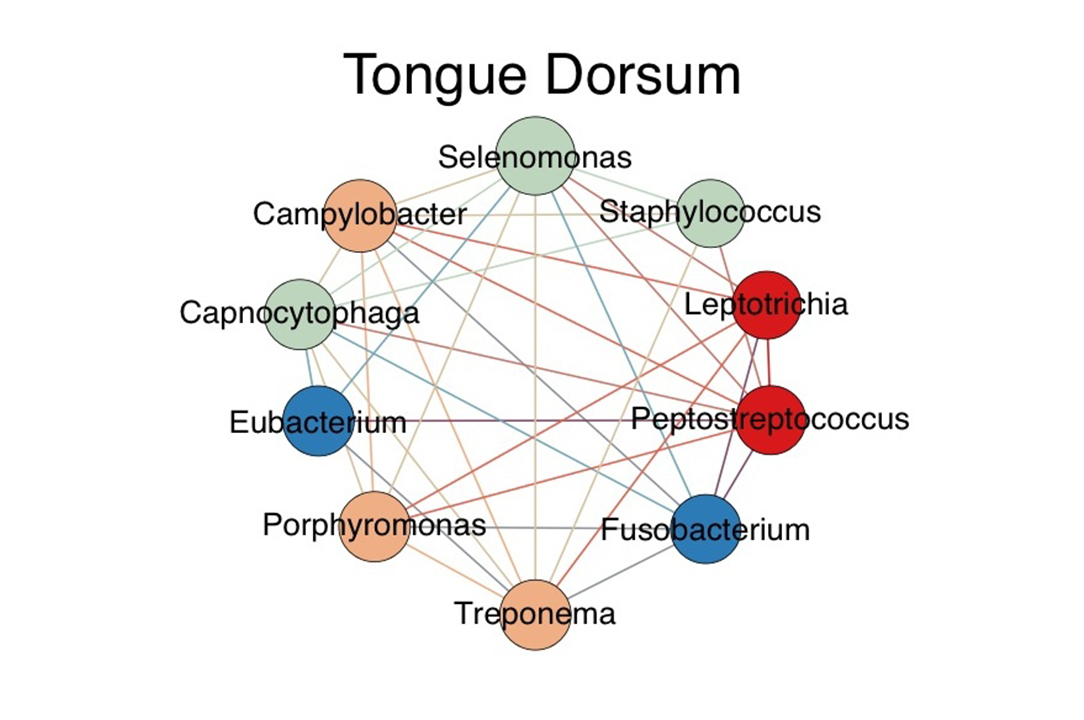 Tongue Dorsum network illustration