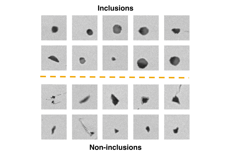 Technical graphic showing inclusions and noninclusions