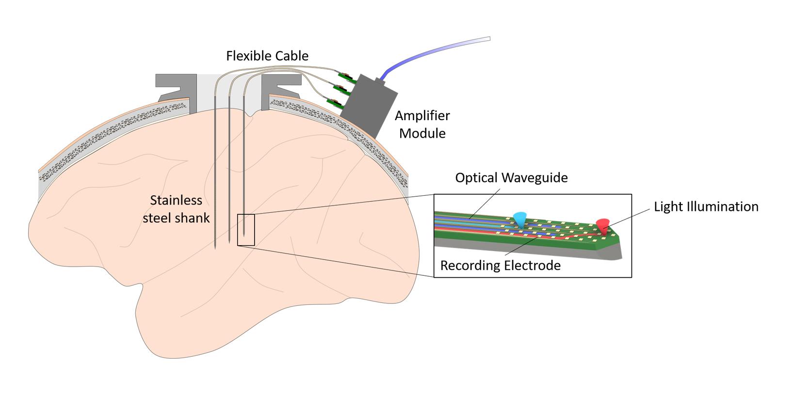 diagram of steeltrodes