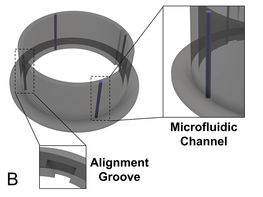 Technical graphic showing the alignment grove and microfluidic chamber of the dura
